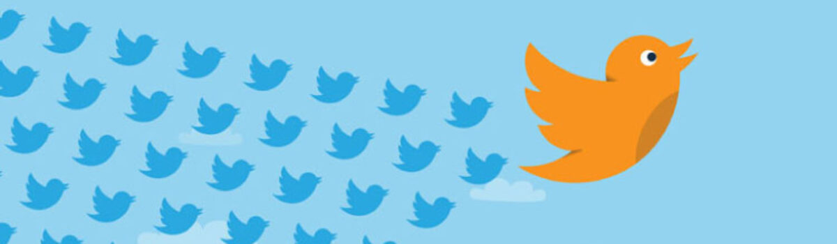 Use Twitter Followers To Grow Online