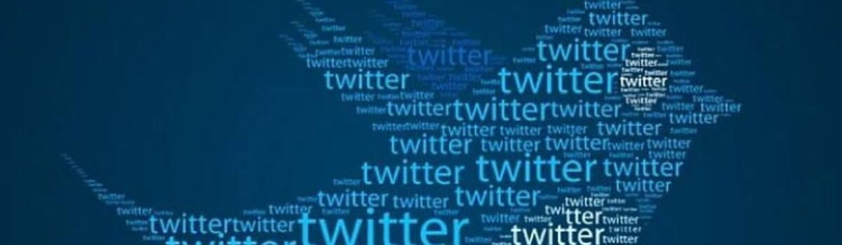 Why your Twitter Profile needs Maximum Followers?